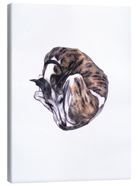 Canvas print  Whippet at rest, colour pencil portrait - Jim Griffiths