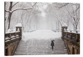 Winter in Central Park