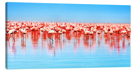 Flamingo in the lake Nakuru