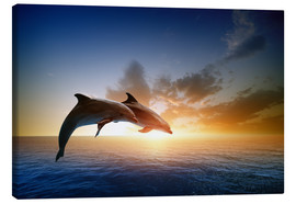 Canvas print  Dolphins in the sunset