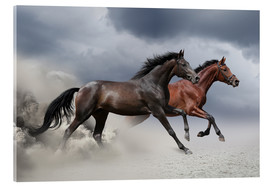 Acrylic glass  Horses in the storm