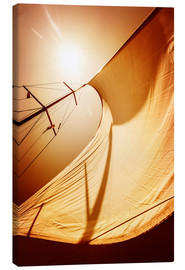 Canvas print  Sail in the wind II