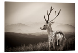 Acrylic glass  Stag in the mountains