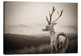Canvas print  Stag in the Mountains