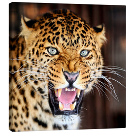Canvas print  Leopard portrait