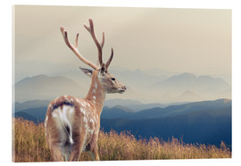 Acrylic glass  Deer standing on the mountain