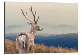 Deer standing on the mountain