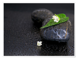 Premium poster  Black stones with leaf