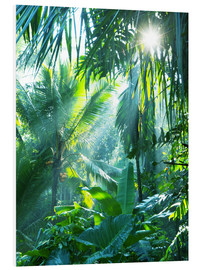 Foam board print  Jungle fever