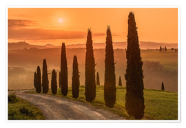 Premium poster  Golden Morning - Tuscany - Achim Thomae