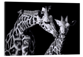 Acrylic glass  Mother and child giraffe - Sabine Wagner