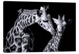 Canvas print  Mother and child giraffe - Sabine Wagner