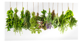 Acrylic glass  Hanging herbs