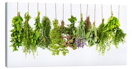 Canvas print  Hanging herbs