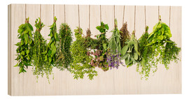 Wood print  Hanging herbs