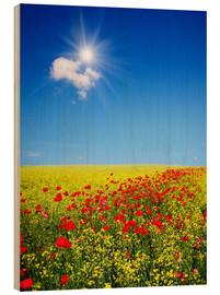 Wood print  Sunny landscape with flowers in a field