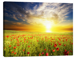 Canvas print  Field with green grass and red poppies