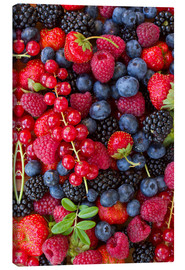 Canvas print  Colorful berries