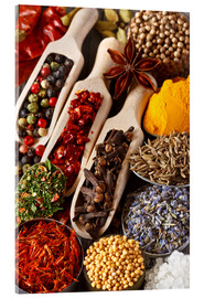 Acrylic print  Colorful aromatic spices and herbs