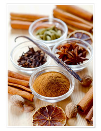 Premium poster  Christmas spices