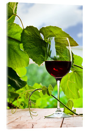 Acrylic print  Glass of Red Wine in Vineyard