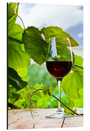 Aluminium print  Glass of Red Wine in Vineyard