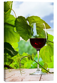 Canvas print  glass with red wine in vineyard