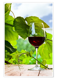 Premium poster  glass with red wine in vineyard