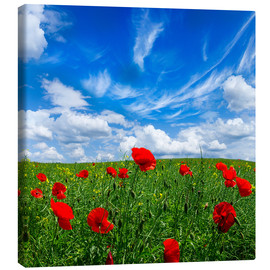 Canvas print  Red poppies on green field