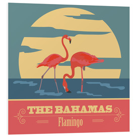 Foam board print  The Bahamas - Flamingo
