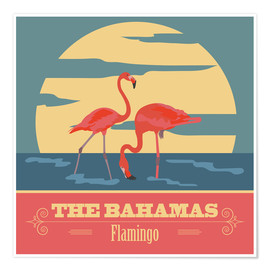 Premium poster  The Bahamas - Flamingo