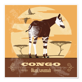 Premium poster  Congo - Okapi - Kidz Collection