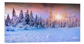 Foam board print  winter sunrise in the mountain forest