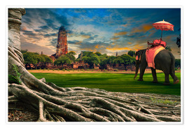 Premium poster  big root of banyan tree and elephant
