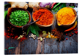 Acrylic print  Colorful spices diversity