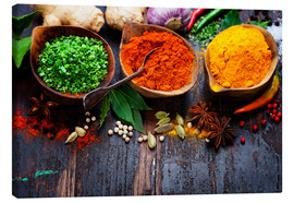 Canvas  Colorful spices diversity