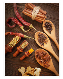 Poster Spices Still Life
