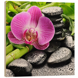 Wood  Zen stones and pink orchid