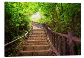 Acrylic print  Stairway to forest, Erawan national park