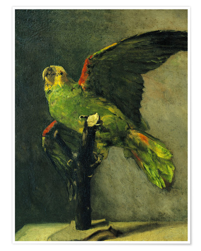 Premium poster The green parrot