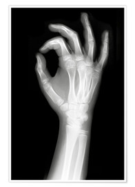 Poster  X rayed OK sign