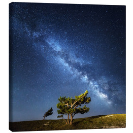 Canvas print  Milky Way in Crimea