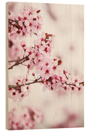 Wood print  flowering fruit tree