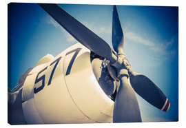 Canvas print  Propeller of a military plane