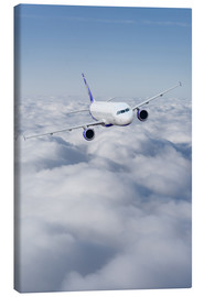 Canvas print  Airliner in flight