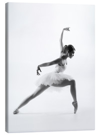 Canvas print  Beautiful ballet dancer