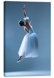 Canvas print  Dance of the Swan