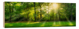 Wood print  Forest panorama in summer - Jan Christopher Becke