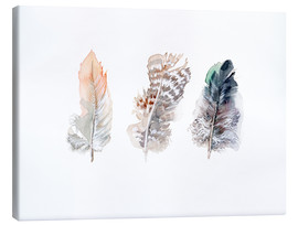 Canvas print  3 feathers - Verbrugge Watercolor