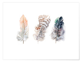 Poster  3 feathers - Verbrugge Watercolor